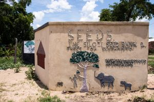 Silozi Seed Bank & Trees for Elephants